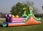 Bug slide 'n play Jumping Castle